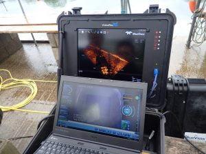 Live visual and sonar image